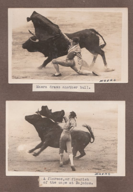 SPANISH AND PORTUGUESE BULL-FIGHTING [Cover Title]. A. J. REYNOLDS.