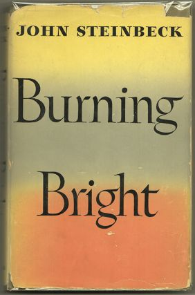 BURNING BRIGHT: A Play in Story Form